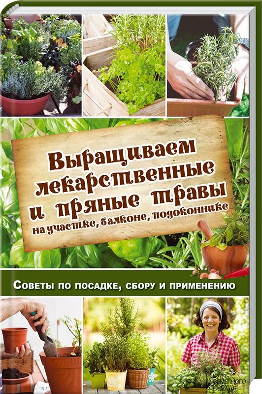пряные травы описание и фото