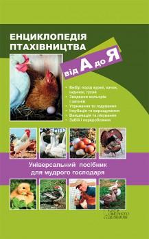 magazin-tsveti-mir-uvlecheniy-tsveti-izhevsk-aktsii-skidki